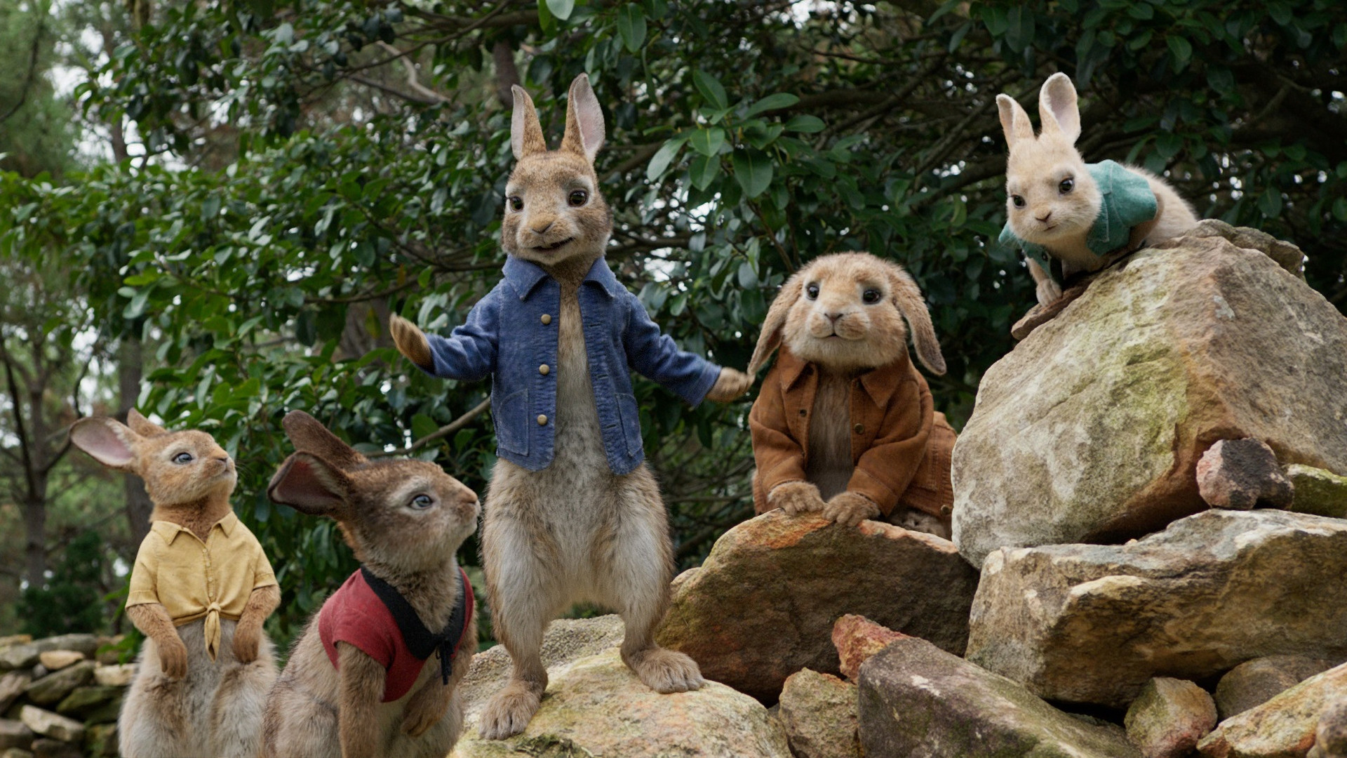 1920x1080 Peter Rabbit Movie Characters 2018 HD #4744
