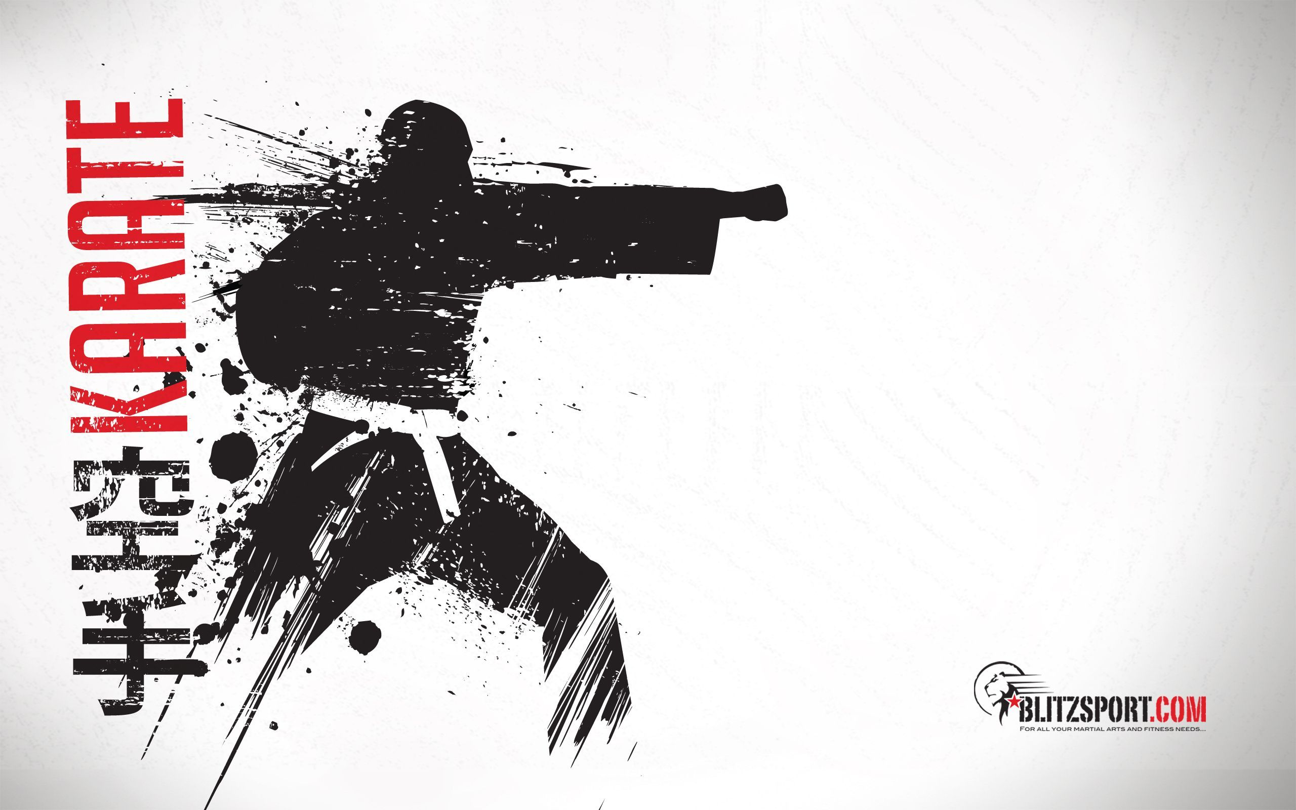 2560x1600 Blitz Judo Wallpaper (1920 x 1440) | T-Shirt Ideas | Pinterest ...