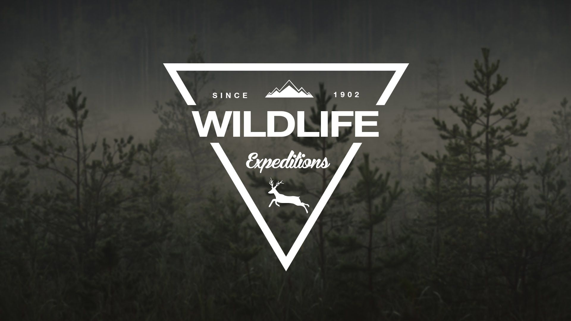 1920x1080 How To Design A Wildlife Triangle Logo In Photoshop - YouTube