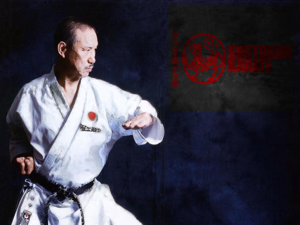 1024x768 Shotokan Karate Download HD Wallpapers and Free Images