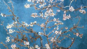 Almond Branches Van Gogh Wallpapers – Top Free Almond Branches Van Gogh Backgrounds