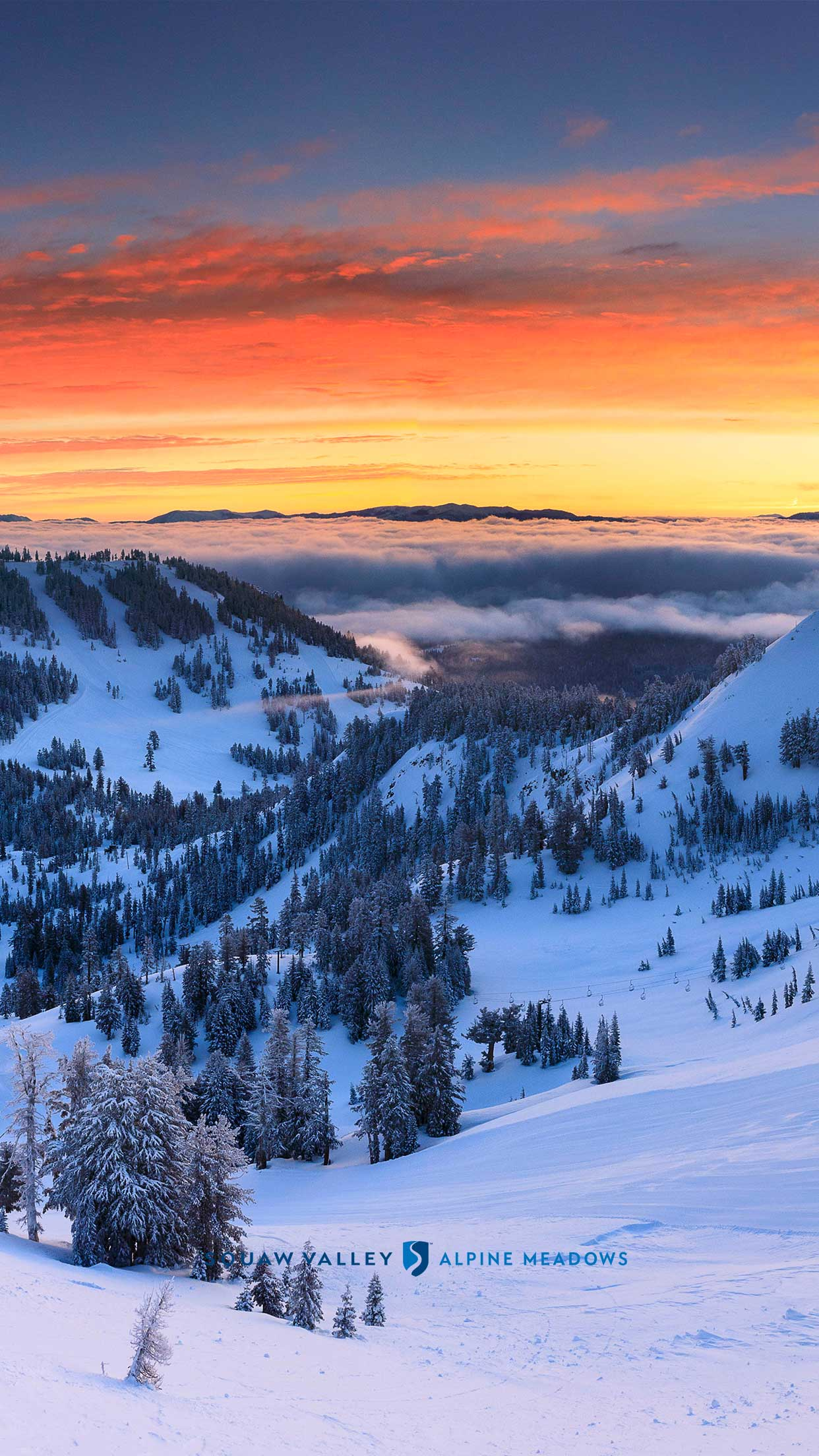 1242x2208 Download Squaw Valley Alpine Meadows Wallpaper | Squaw Alpine