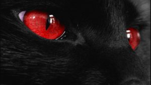 Red Eyes Wallpapers – Top Free Red Eyes Backgrounds