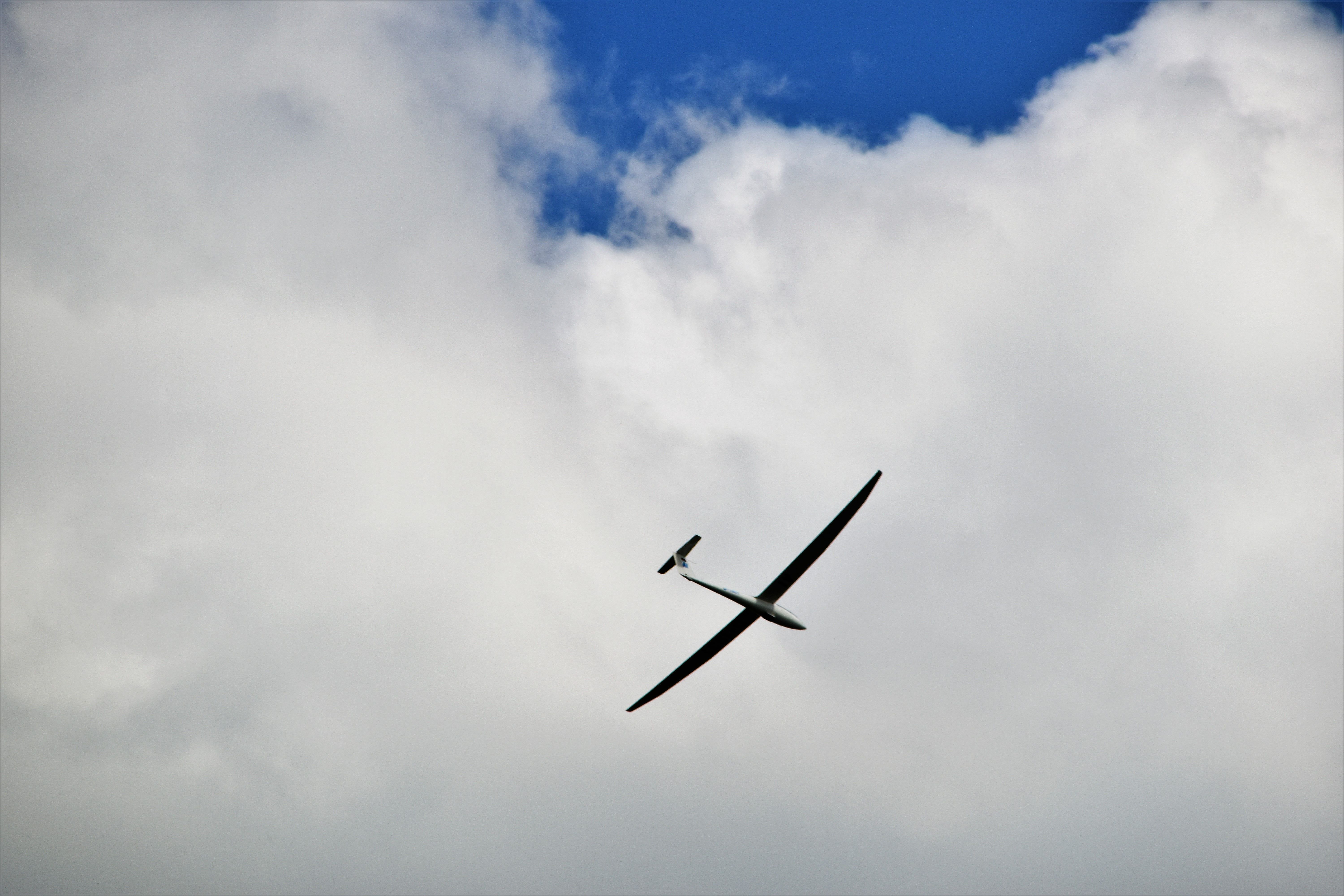 6000x4000 500+ Glider Plane Pictures | Download Free Images on Unsplash