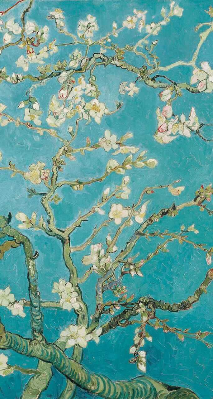 684x1280 Almond blossom wallpaper | iPhone wallpaper | Pinterest | Almonds ...