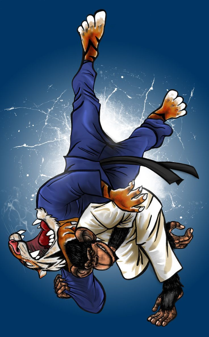 736x1182 10 best judo images on Pinterest | Combat sport, Marshal arts and ...