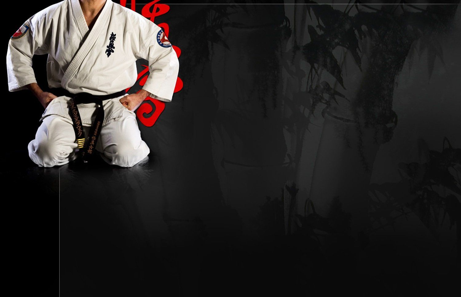 1500x966 Karate Wallpapers Group (72+)