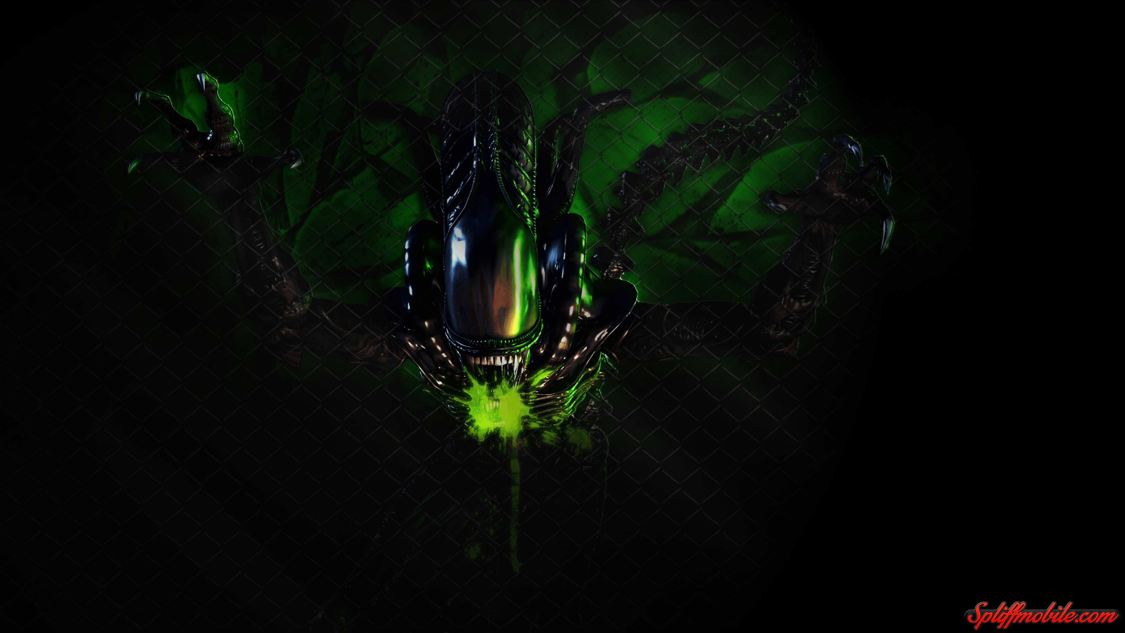 3840x2160 HD Alien Wallpaper