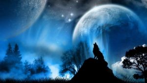 Black Wolf Howling Wallpapers – Top Free Black Wolf Howling Backgrounds