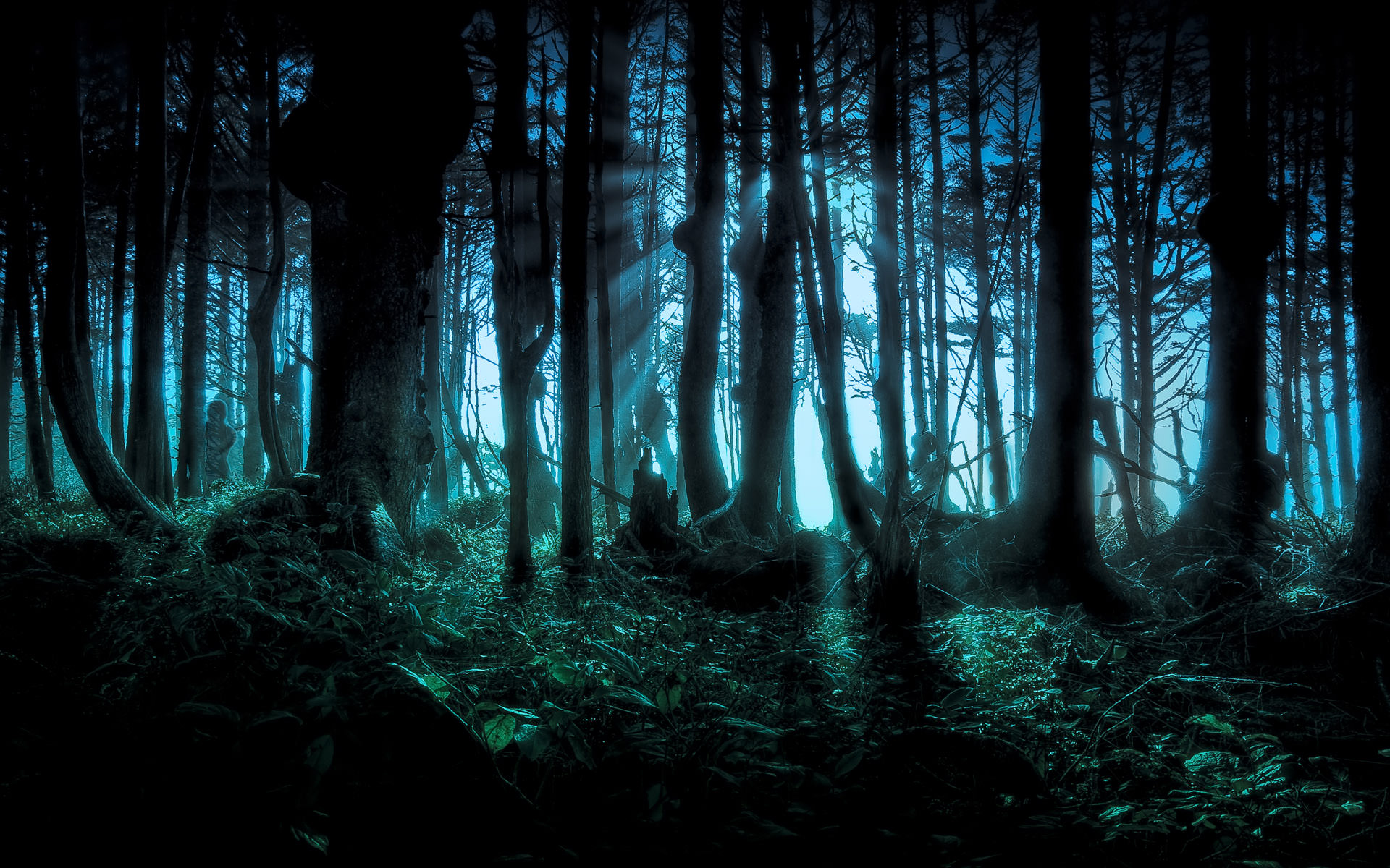 1920x1200 Mysterious Forest | Cool Wallpapers