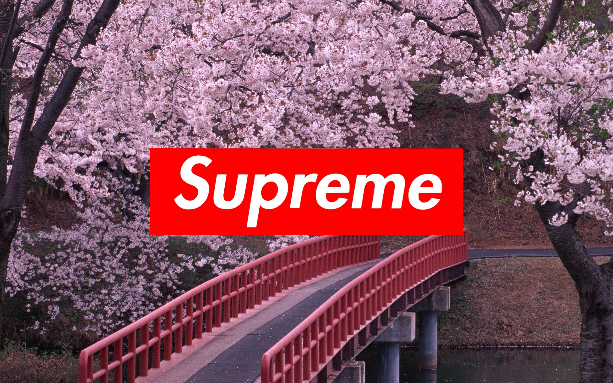 2560x1600 Supreme background ·① Download free backgrounds for desktop and ...