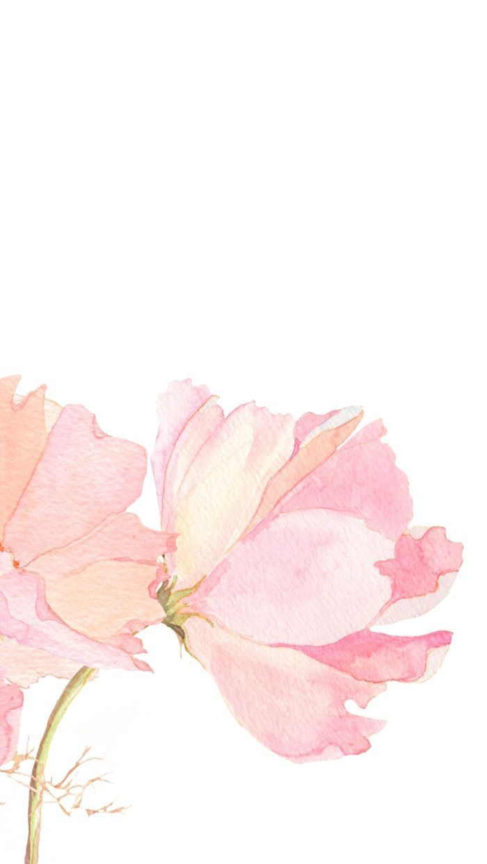 700x1243 Pink watercolour floral flowers iphone phone wallpaper ...