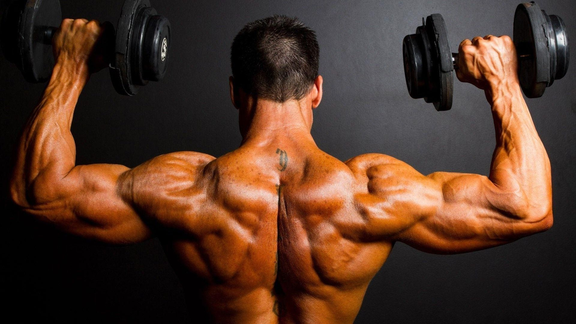 1920x1080 Wallpapers Bodybuilding Group (73+)