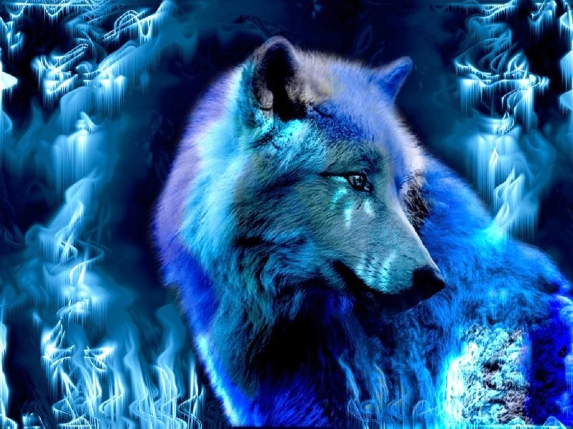 1125x843 Fantasy Wolf Wallpapers and Background Images - stmed.net