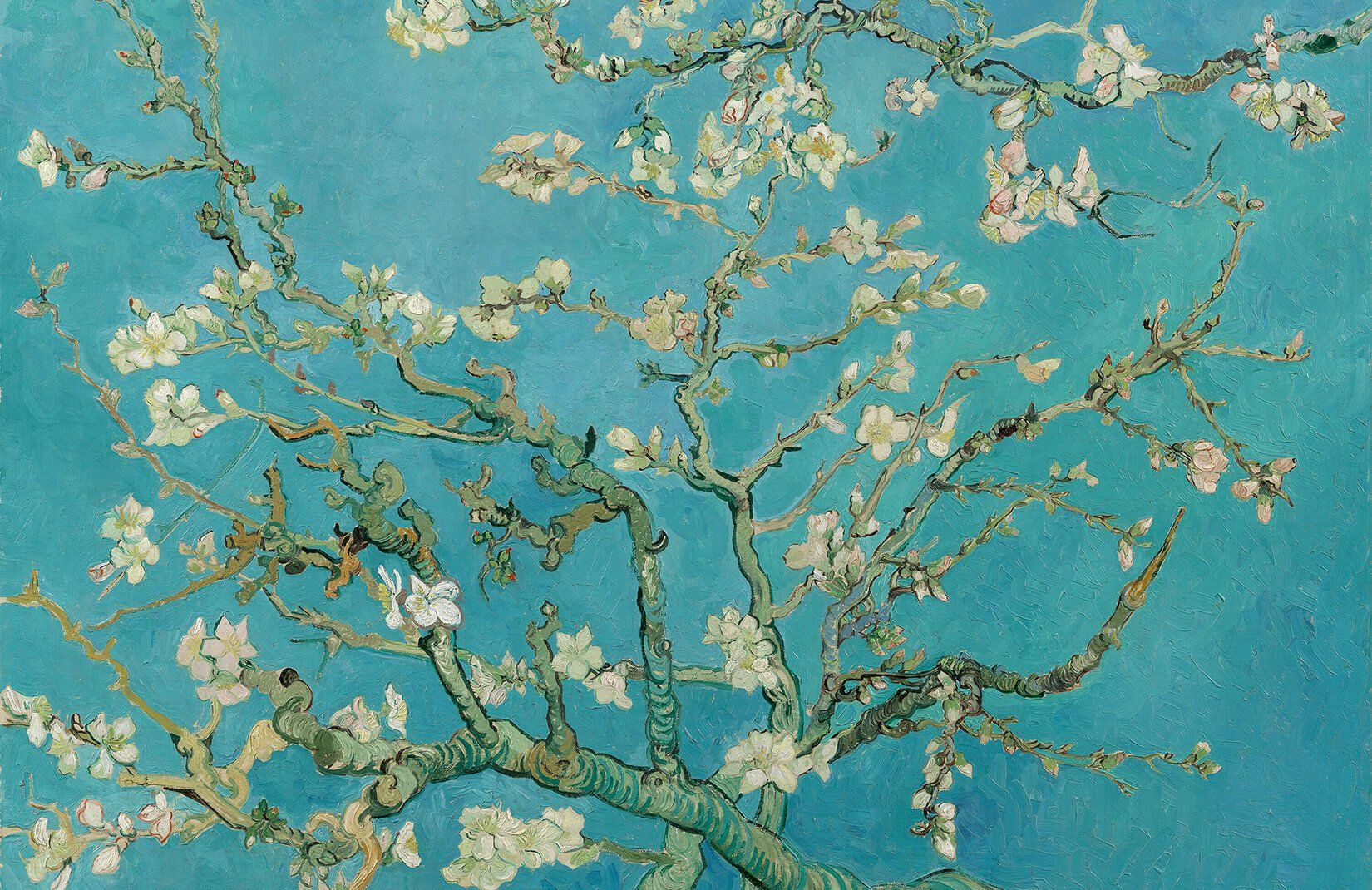 1650x1070 Almond Branches by Van Gogh Wallpaper - Murals Wallpaper