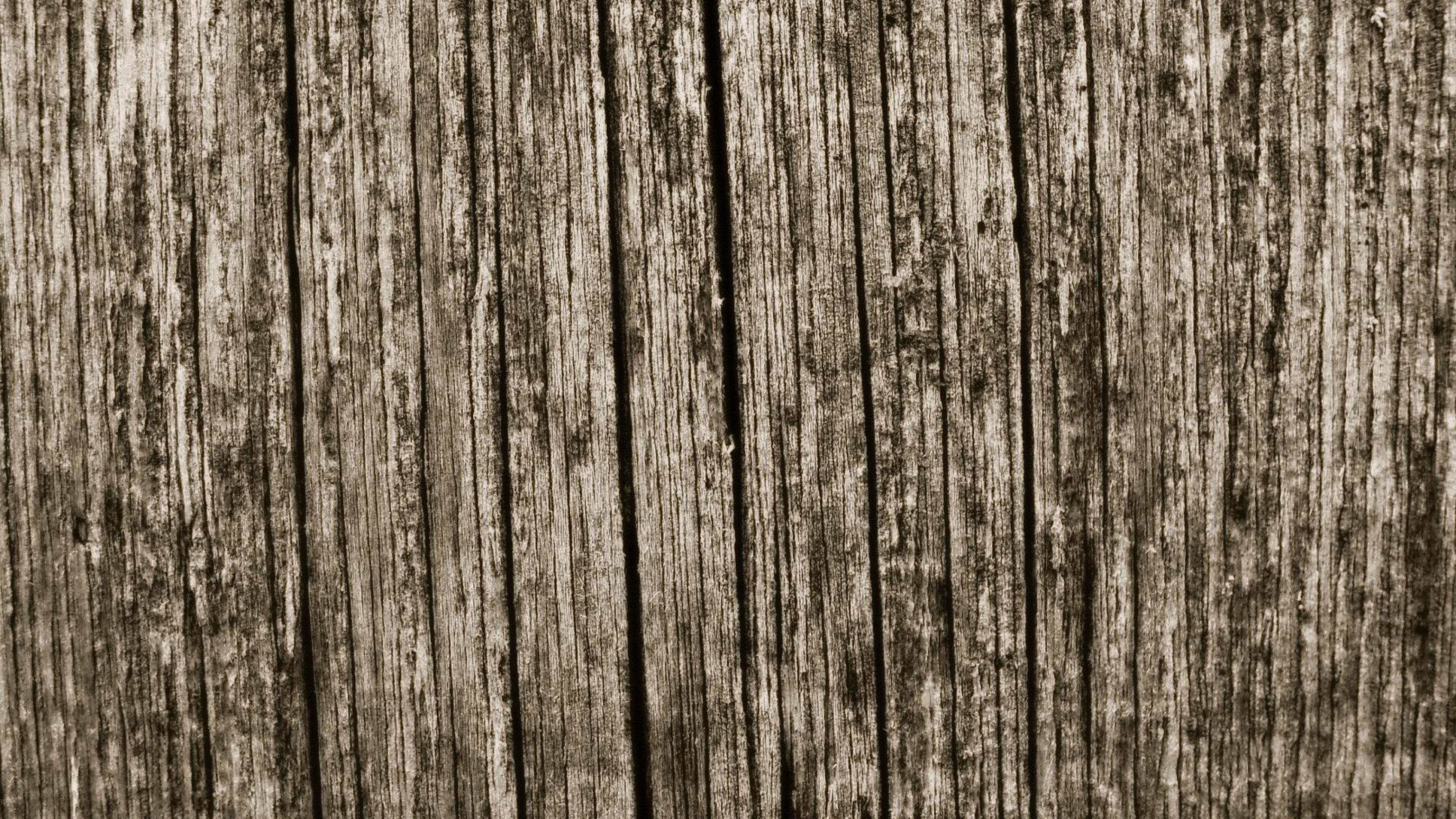 3840x2160 Wood Wallpapers Group (86+)