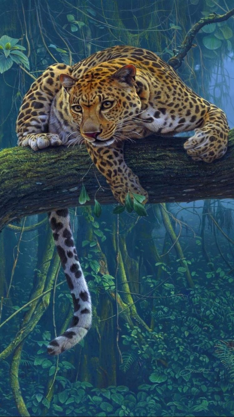 750x1334 Animal/Leopard (750x1334) Wallpaper ID: 561154 - Mobile Abyss