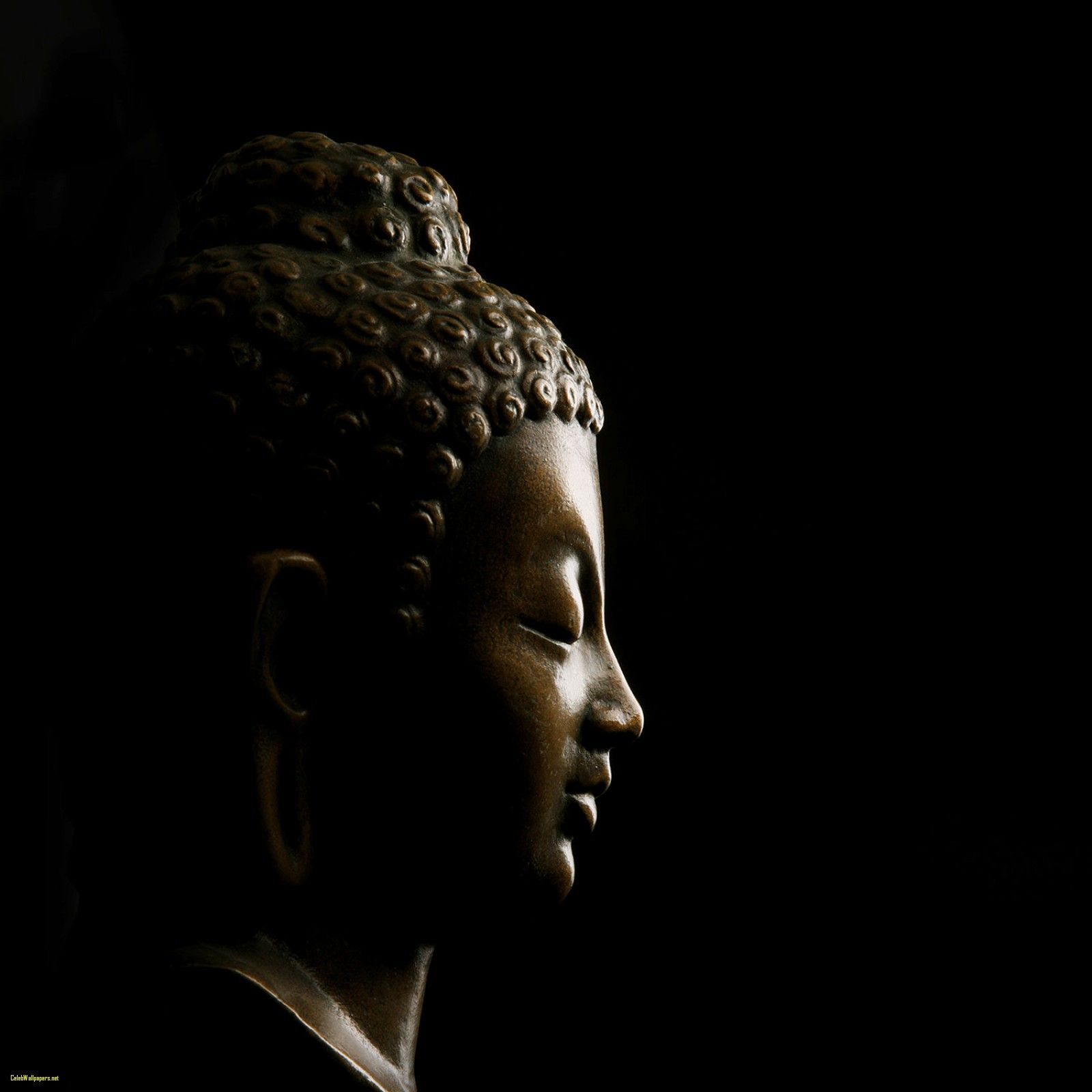 1600x1600 Buddha Wallpaper Buddha On Black Wallpaper for Decor | CelebsWallpaper