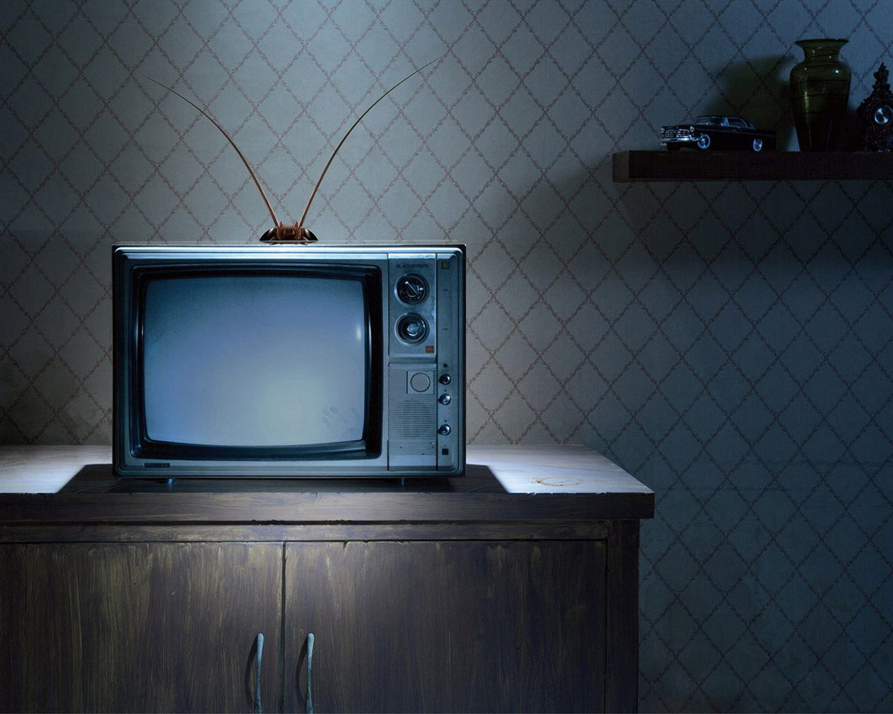 1280x1024 Bug on Vintage TV Wallpaper (9687) - Wallpaperesque