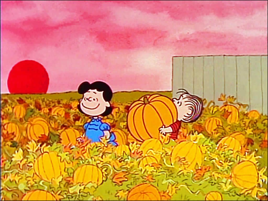 1024x768 Charlie Brown HD Wallpapers Backgrounds Wallpaper   HD Wallpapers ...