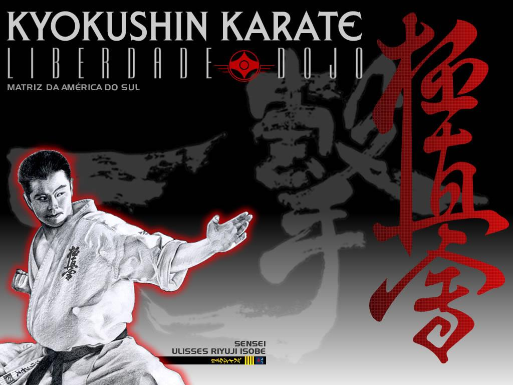 1024x768 Karate Wallpapers Group (72+)
