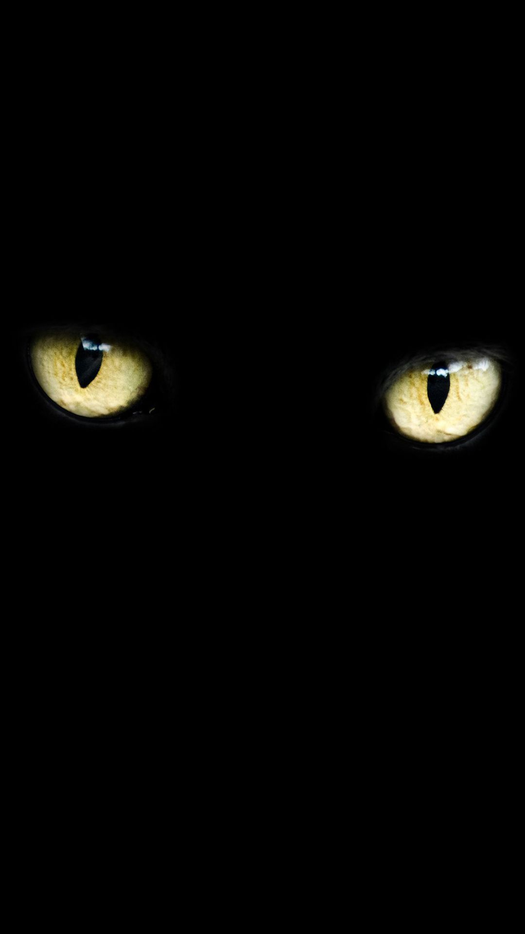 1080x1920 Cat Eyes HD Wallpaper For Your Mobile