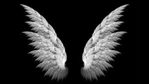 Wings iPhone Wallpapers – Top Free Wings iPhone Backgrounds