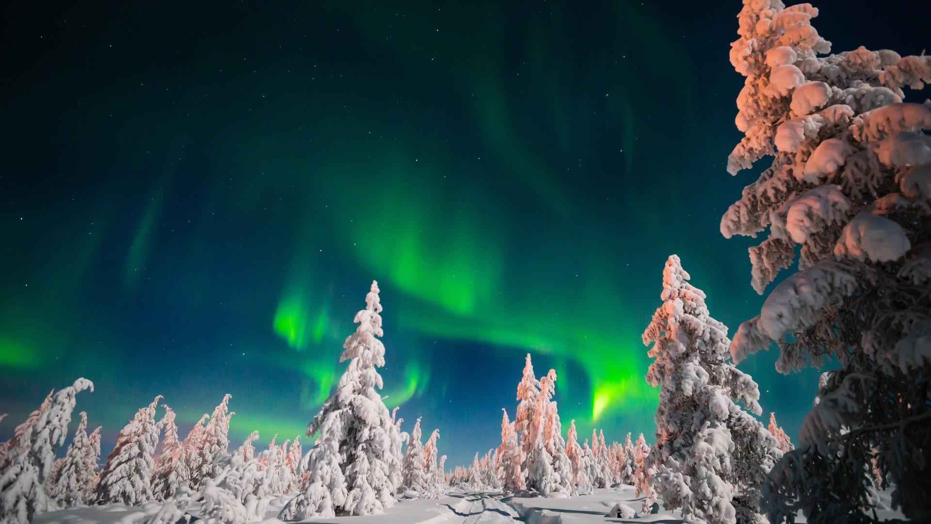 1920x1080 Aurora Borealis Over The Snowy Forest - Sakha, Russia Wallpaper ...