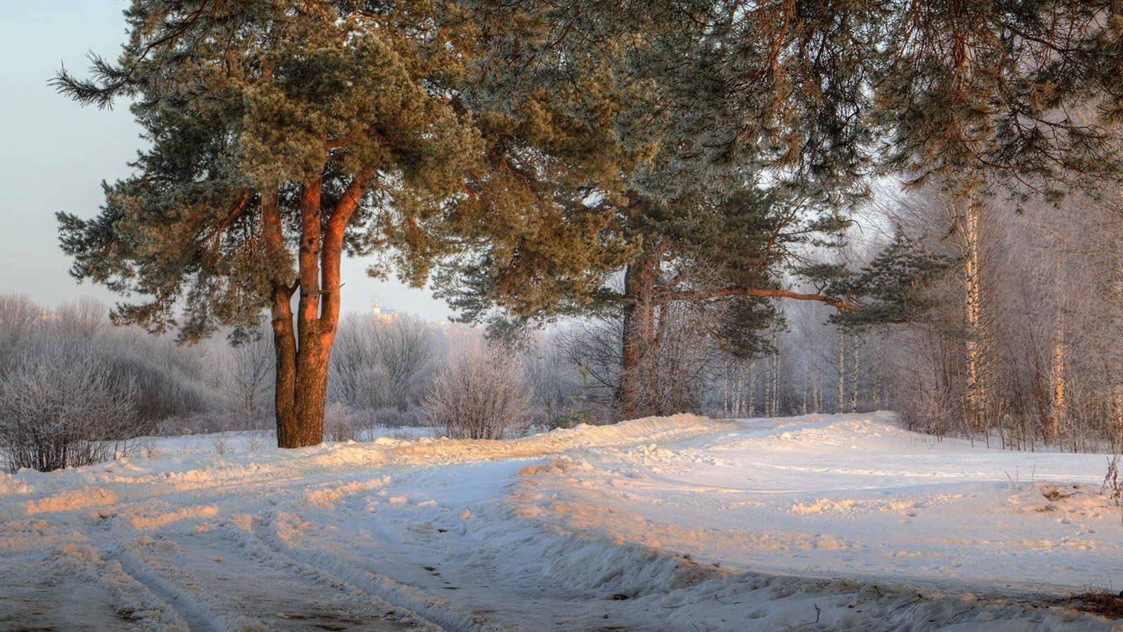 1600x900 pictures,landscape, hd, trees, winter, morning, fresh, russia, road ...