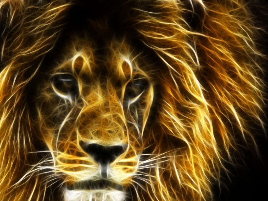 1024x768 3D Cool Lion Wallpaper | 3D Wallpapers - All Types | Animal ...
