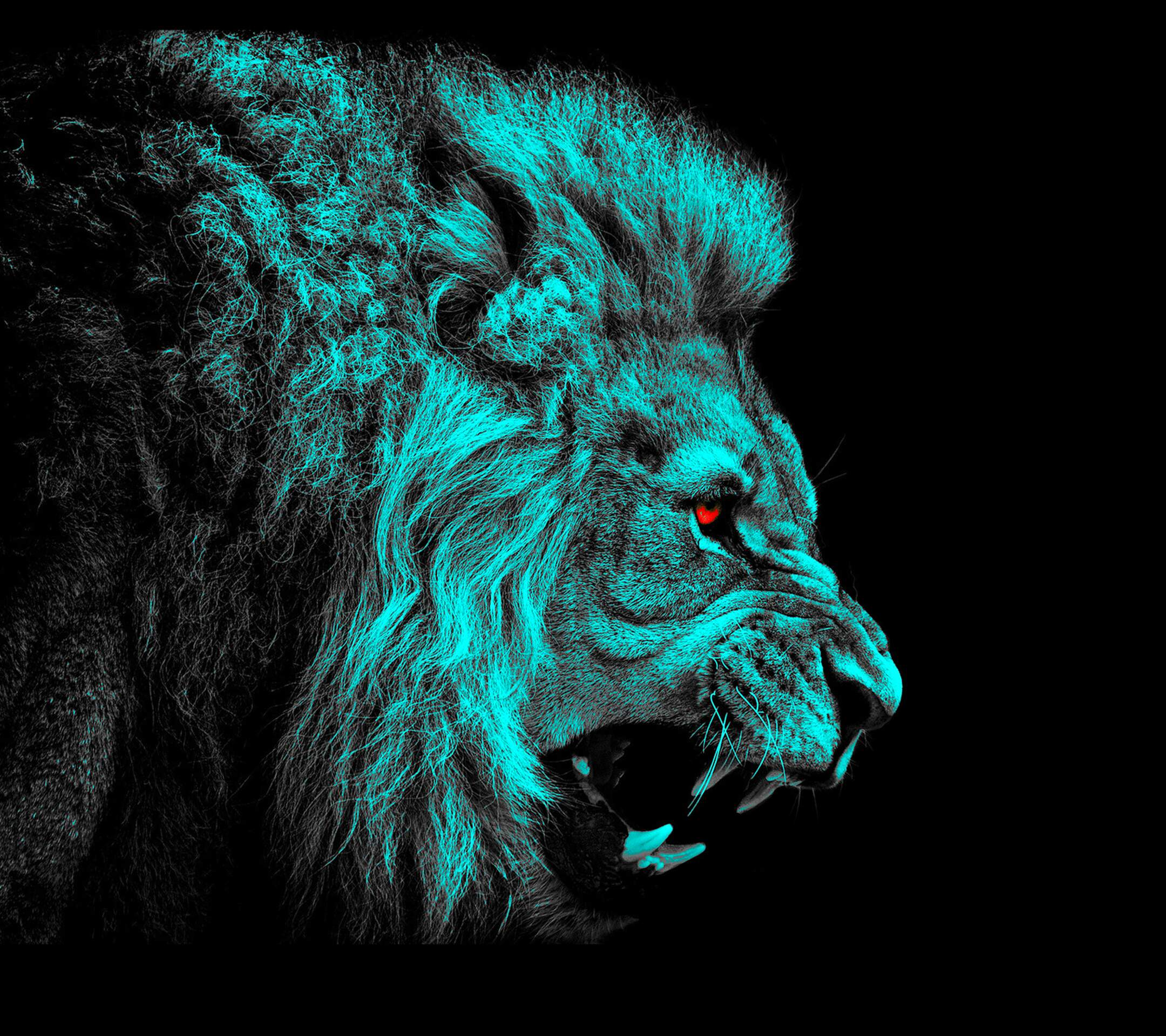2160x1920 1224 Lion HD Wallpapers | Background Images - Wallpaper Abyss