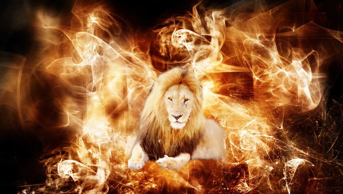 1360x768 3D Wallpaper Hd Fire Animals Hd 1080P 12 HD Wallpapers | Lugares ...