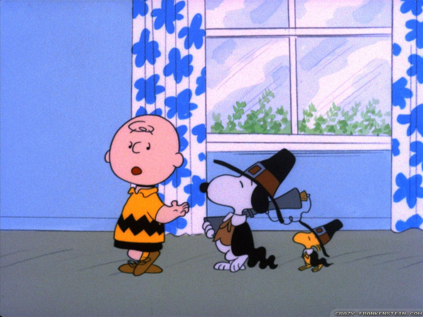 1600x1200 3 A Charlie Brown Thanksgiving HD Wallpapers   Background Images ...
