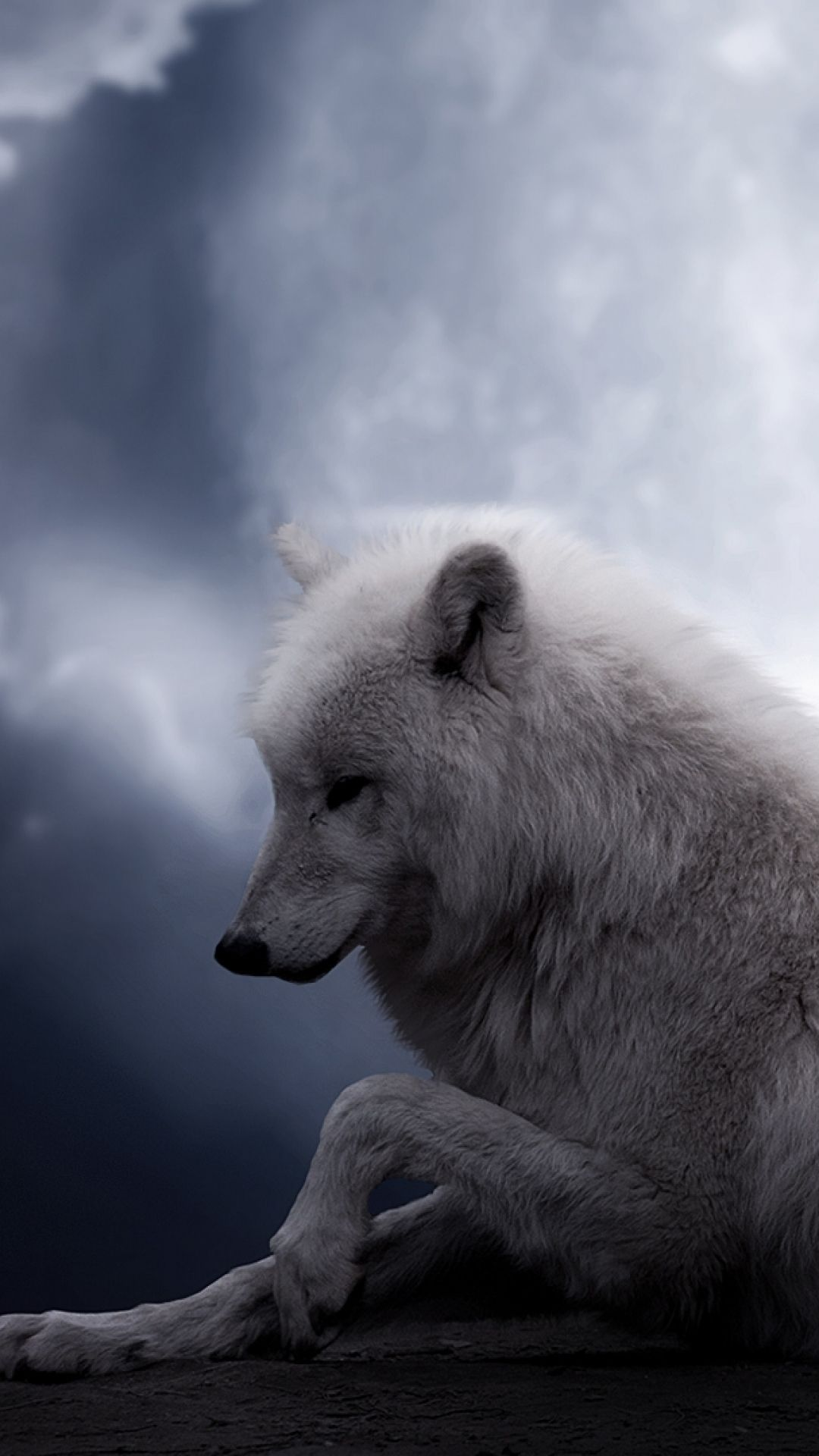 1080x1920 Gorgeous Backgrounds Wolf Moon Wallpaper Amazing Wolf Moon | HD ...