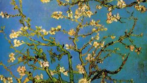 Almond Tree Van Gogh Wallpapers – Top Free Almond Tree Van Gogh Backgrounds