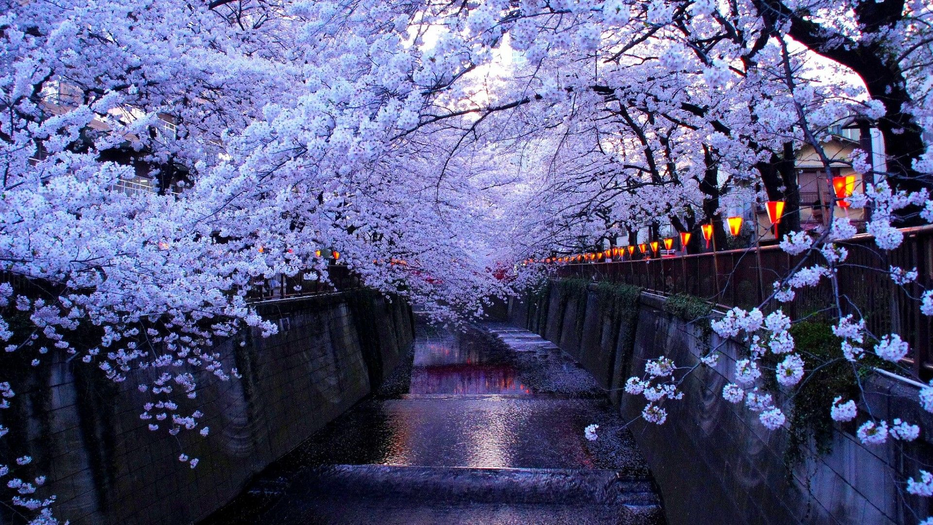 1920x1080 Country - Japan | Wallpaper Studio 10 | Tens of thousands HD and ...