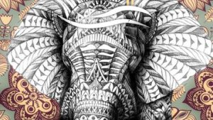 Hipster Elephant Wallpapers – Top Free Hipster Elephant Backgrounds