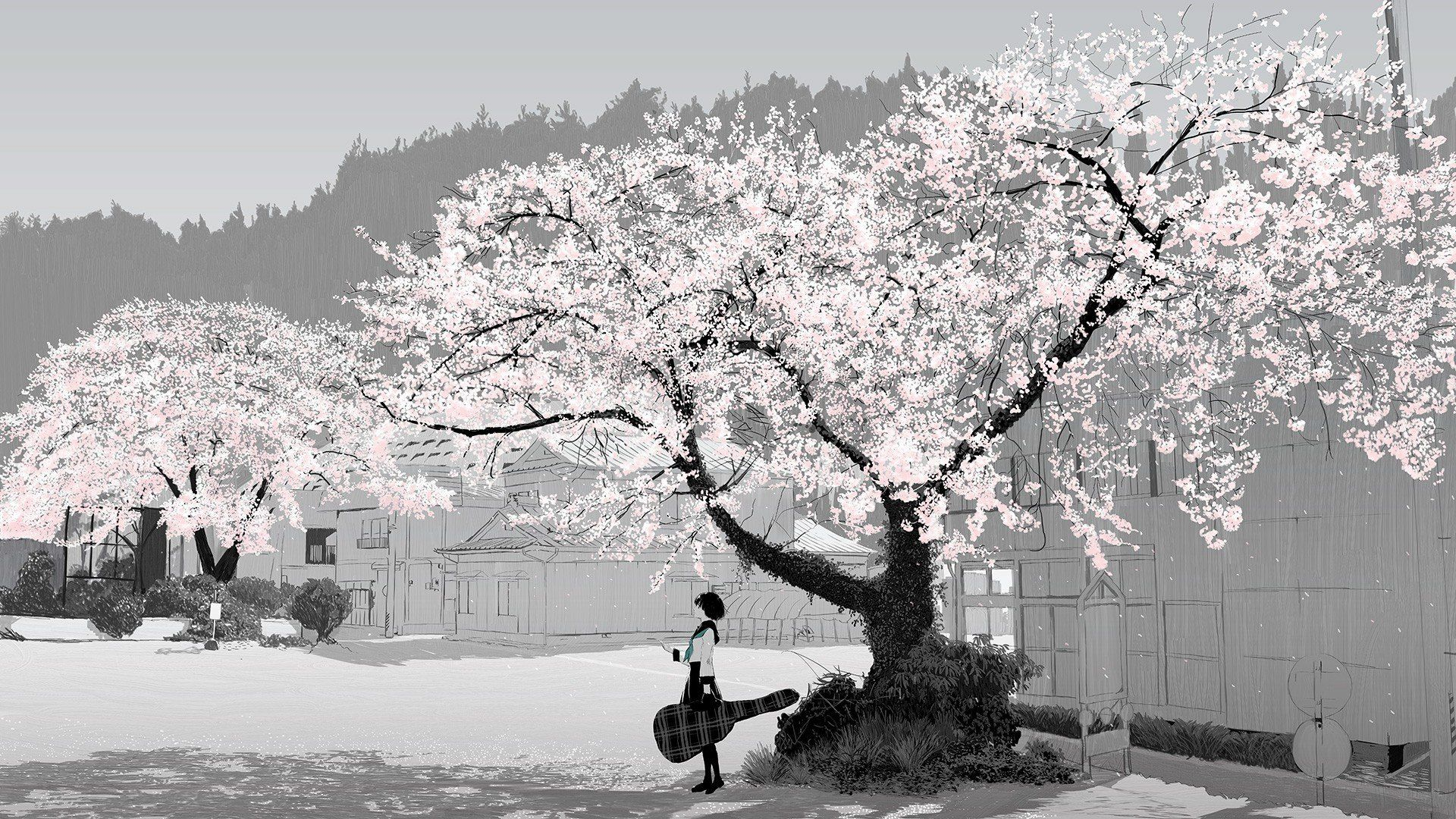1920x1080 wallpaper.wiki-Download-Anime-Cherry-Blossom-Image-PIC-WPC0012439 ...