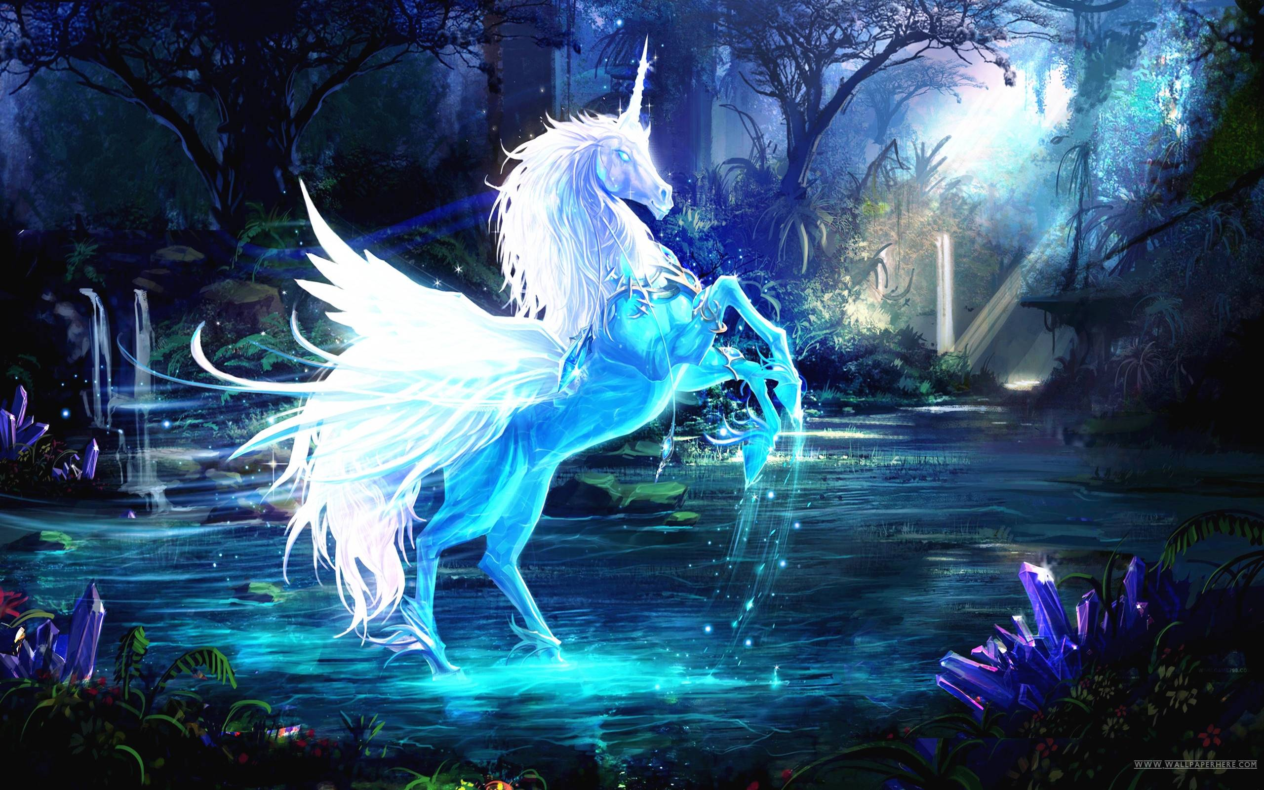2560x1600 Unicorn Wallpapers