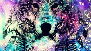 Wolf Girl Galaxy Wallpapers – Top Free Wolf Girl Galaxy Backgrounds
