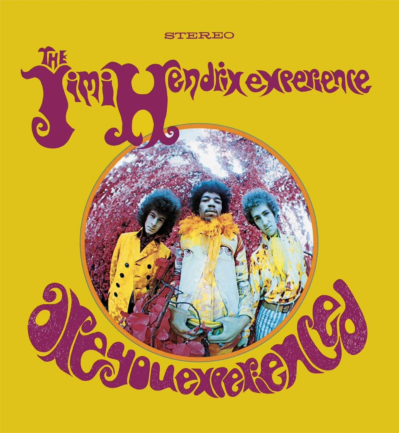 1382x1500 Are You Experienced (Remastered) [180g Vinyl LP]: The Jimi Hendrix ...