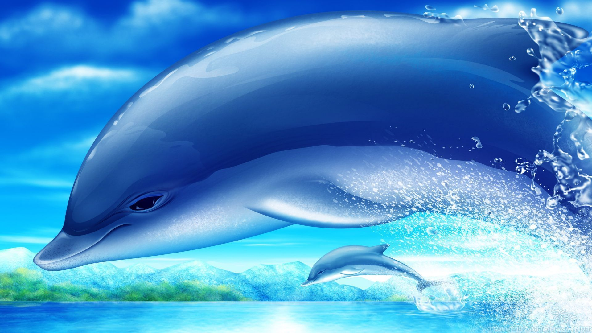 1920x1080 Amazing Dolphins Wallpapers Travelization 1920×1200 Pictures Of ...