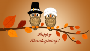 Cute Owl Thanksgiving Wallpapers – Top Free Cute Owl Thanksgiving Backgrounds