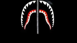 BAPE Shark Logo Wallpapers – Top Free BAPE Shark Logo Backgrounds