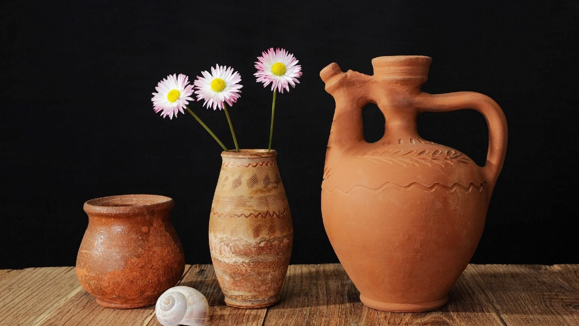 1920x1080 Download wallpaper 1920x1080 daisy, jug, shell, table, pottery full ...