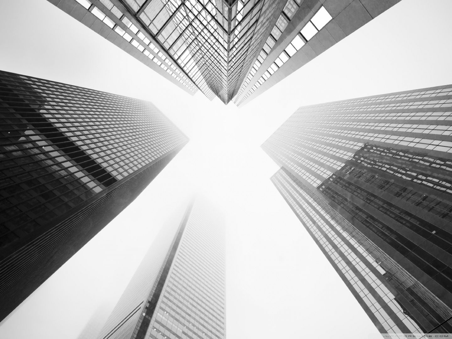 1440x1080 Toronto Skyscrapers Black and White ❤ 4K HD Desktop Wallpaper for ...