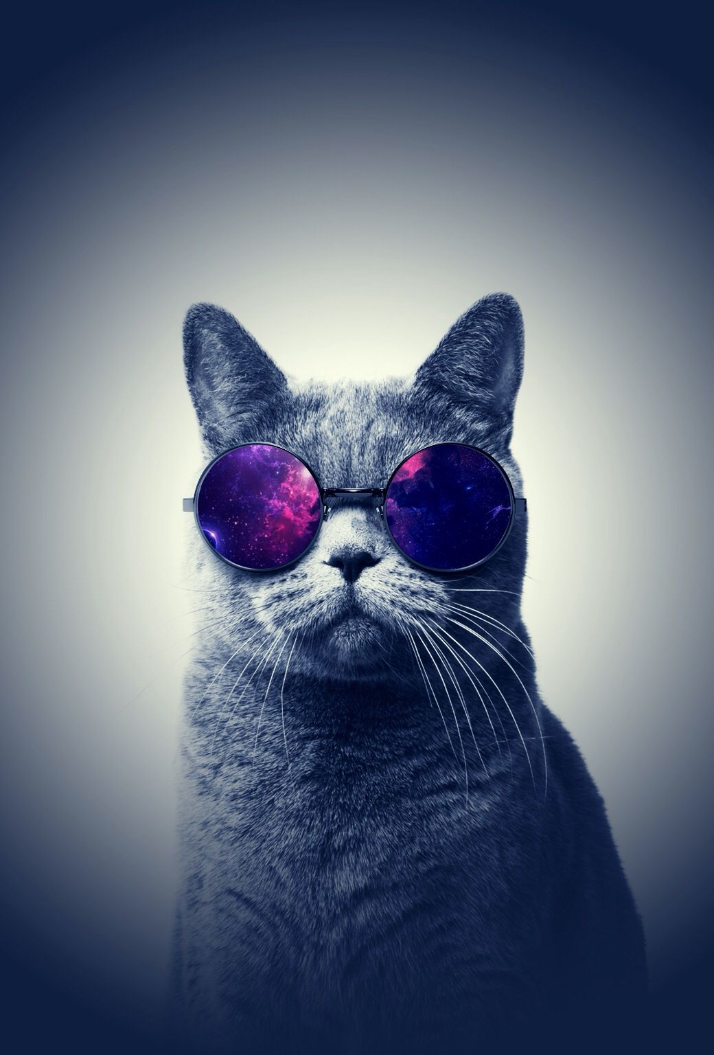 1040x1536 Cool cat | HomePage | Pinterest | Mobile wallpaper and Wallpaper