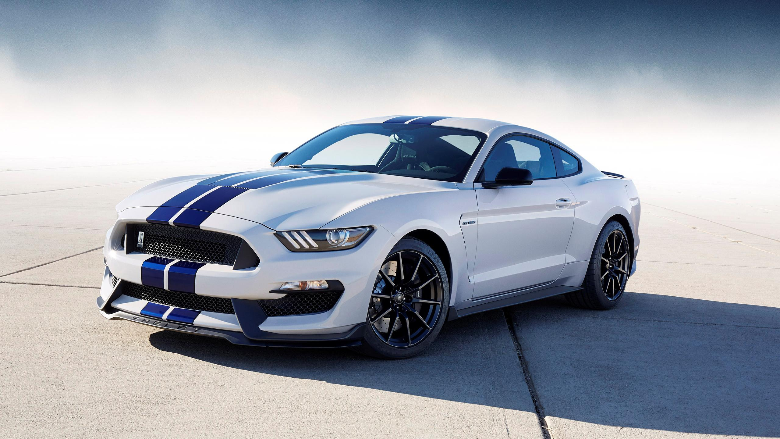2560x1440 Ford-shelby-mustang-free-download | wallpaper.wiki