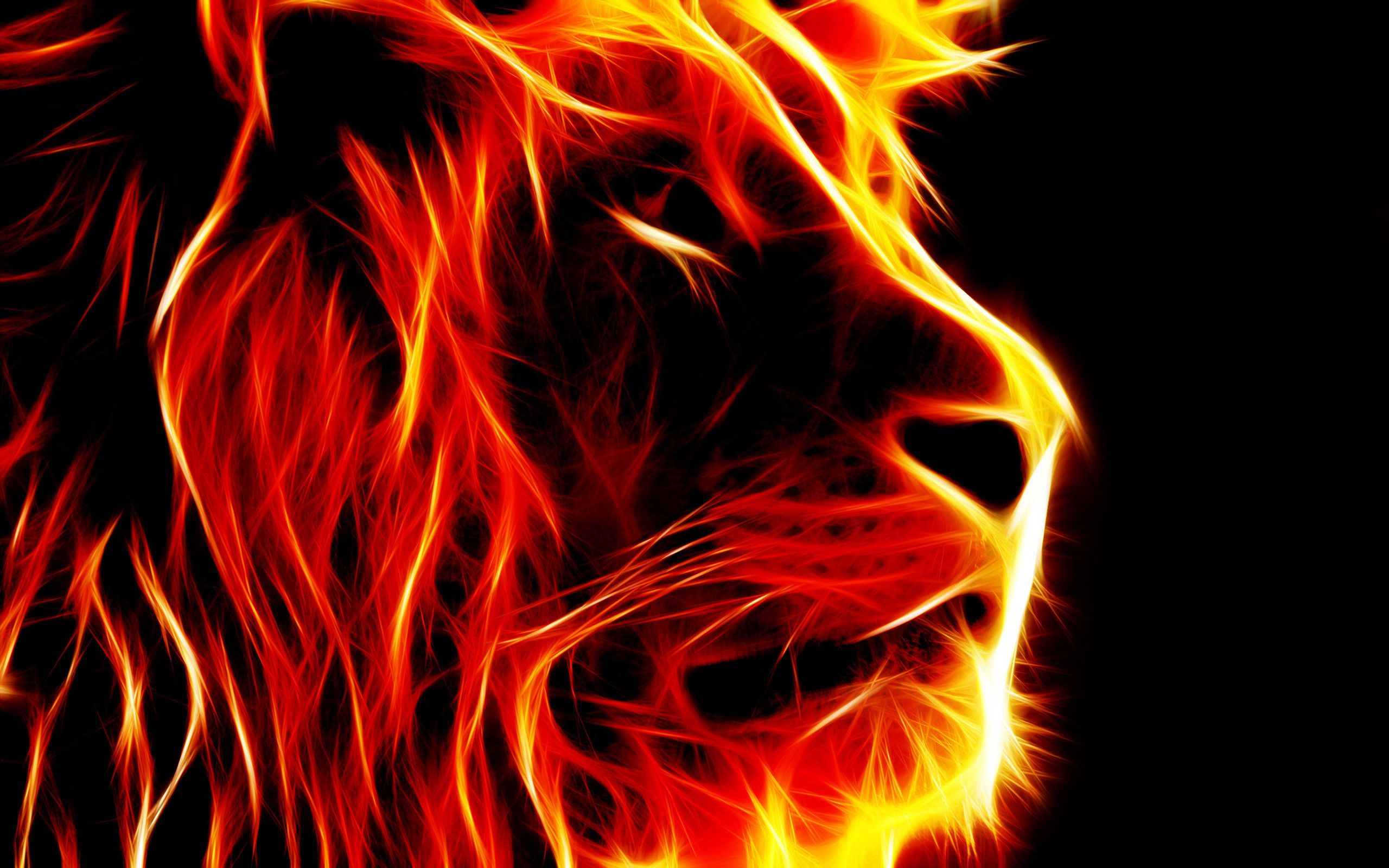2560x1600 Fire Lion Wallpapers (70+ background pictures)