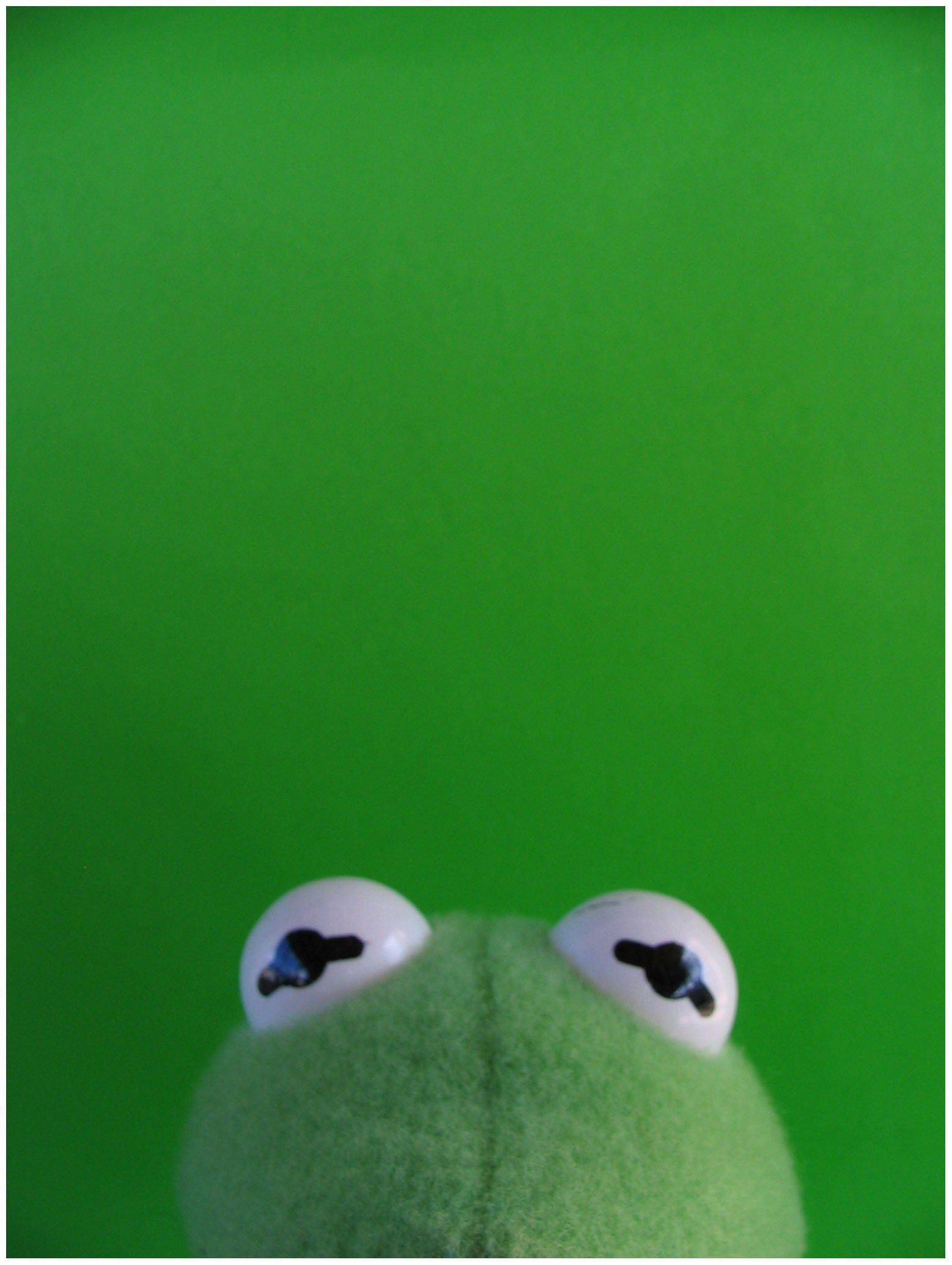 1557x2069 Green Kermit The Frog Wallpaper